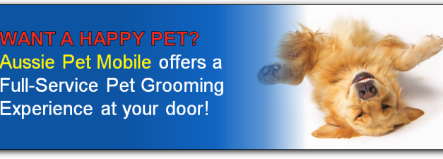 Benefits of Mobile Pet Grooming