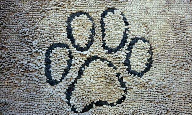 Dirty Dog Doormat Review
