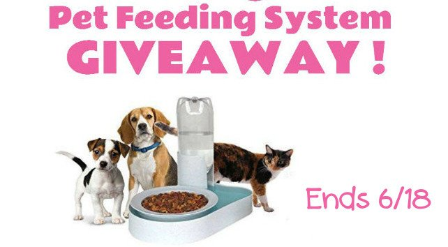 BugOut Pet Feeding System Giveaway