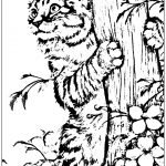 Cat Climbing Tree Coloring Page