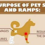 All You Need to Know About Pet Stairs and Ramps for Elderly Pets