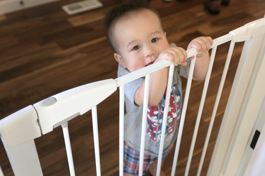 Child and Pet Proofing Your Home