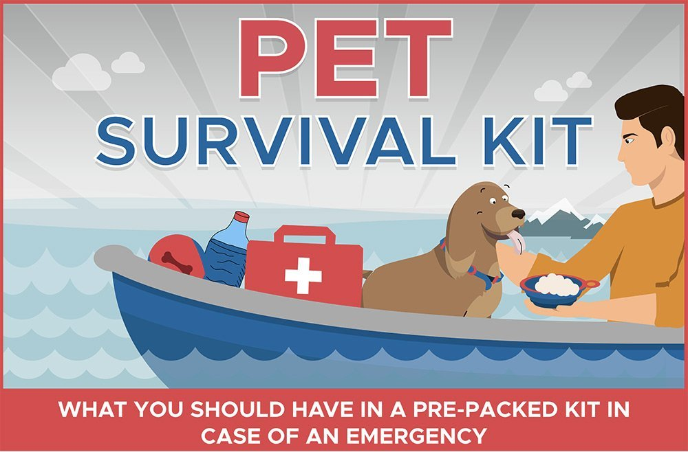 Pet Survival Kit for Emergency Situations