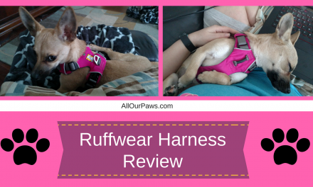 Ruffwear Front Range Harness for Dogs