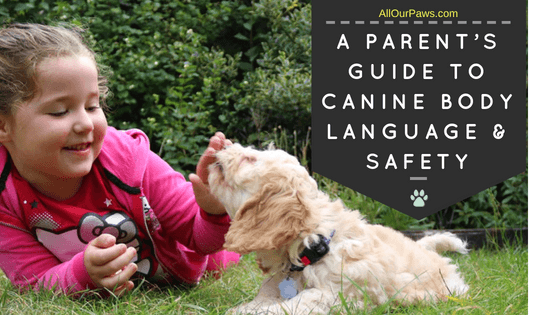 A Parent's Guide to Canine Body Language & Safety