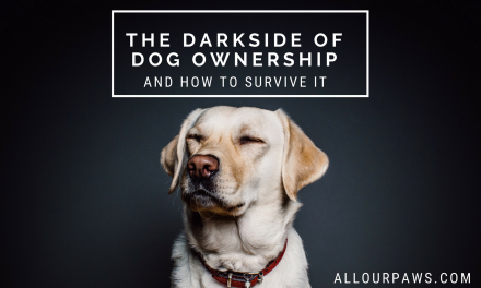 The Dark Side Of Dog Ownership ( And How To Survive It)