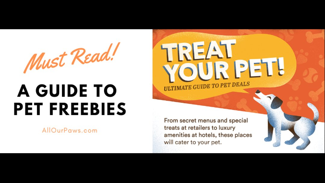 A Guide to Pet Freebies
