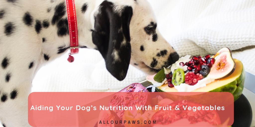 Aiding Your Dog's Nutrition With Fruit & Vegetables