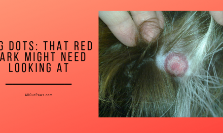 Dog Dots: That Red Mark Might Need Looking At