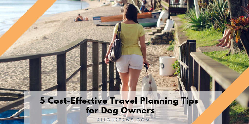 5 Cost-Effective Travel Planning Tips for Dog Owners
