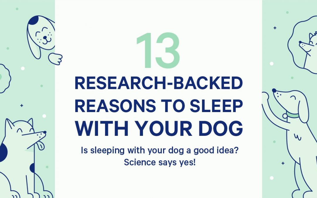 Reasons to Sleep With Your Pup, Backed by Science