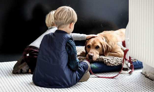 How to Help Children Cope with the Loss of their Pet