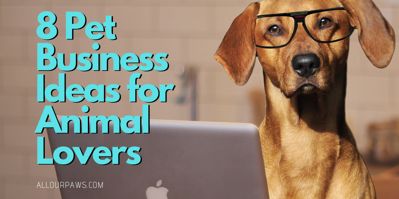 8 Pet Business Ideas for Animal Lovers