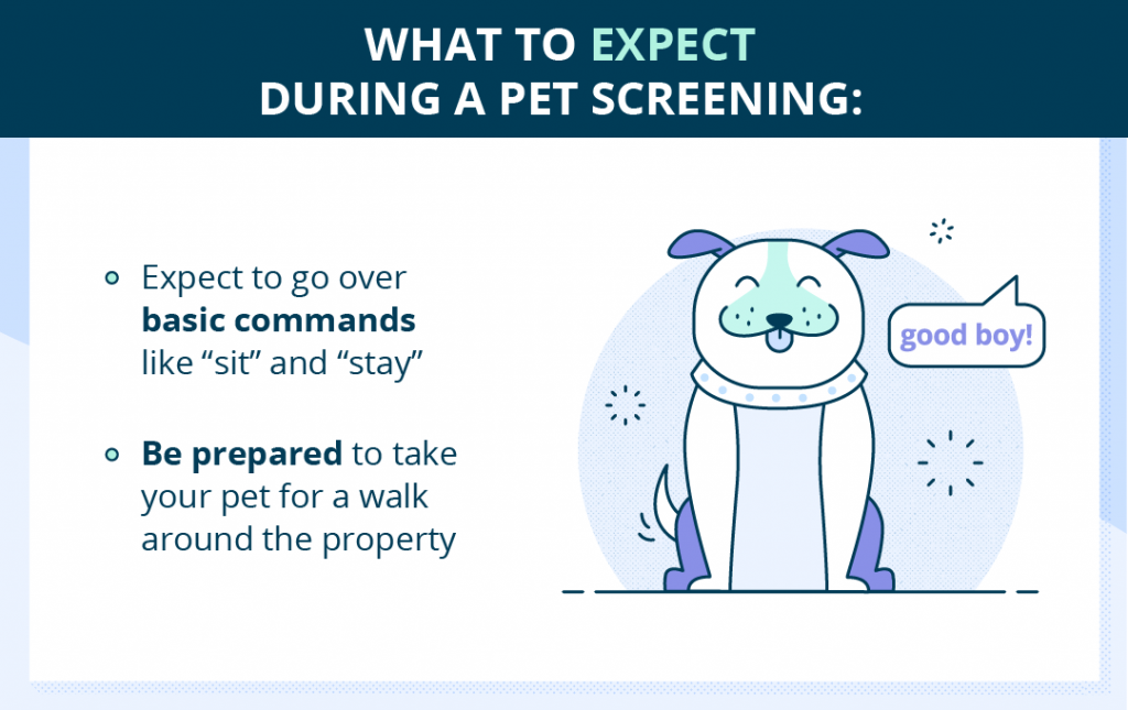 Rental Pet Screening