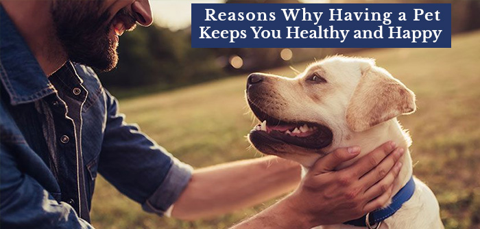 Reasons Why Having a Pet Keeps You Healthy and Happy